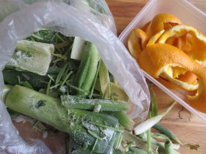 freeze veg ends for stock